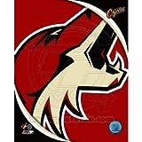 (8x10) Phoenix Coyotes 2011 Te