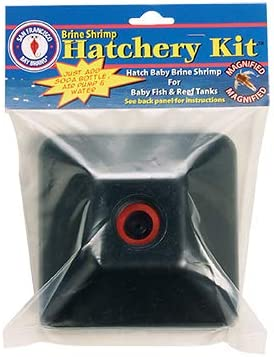 Amazon Com San Francisco Bay Brand Brine Shrimp Hatchery Kit Pet Supplies