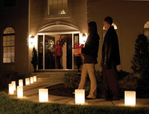 White Luminarias Electric Kit - pack of 40 by LB Inc. (Image #2)