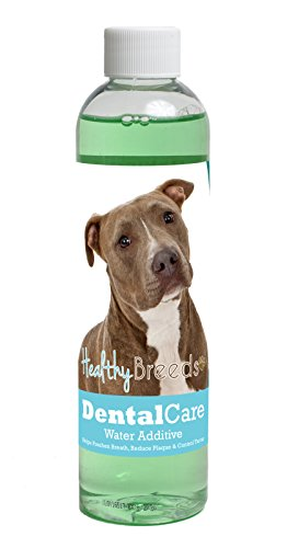 (Healthy Breeds Dog Dental Care Water Additive for Pit Bull, Brown - Over 200 Breeds - Easier Than Sticks Wipes Spray Chews & Treats - Mint Flavor - 8 oz)