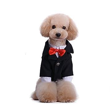 Amazon.com: Mascota Perro Ropa Formal Para Boda 2pcs Set ...