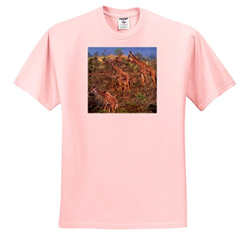 3dRose Danita Delimont - Giraffes - Giraffes, Giraffa camelopardalis, Out On The Savannah, Kenya, Africa - T-Shirts - Light Pink Infant Lap-Shoulder Tee (18M) (TS_256933_71) (Pink Kenya Giraffe)