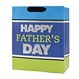 Hallmark Father's Day Large Gift Bag with Tissue Paper (Happy Father's Day Blue, Green and Silver Stripes)