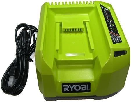 Amazon.com: Ryobi 40 V, iones de litio, Cargador: Jardín y ...