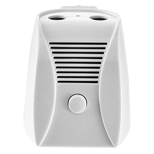 Air Purifier, ETTG Mini Air Ionizer With Ozone and Negative Ions Portable Air Cleaner Remove Smoke and Bad Odors