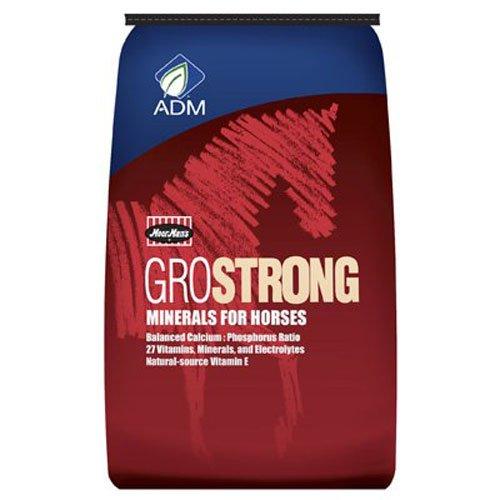 ADM ANIMAL NUTRITION 641BT Horse Vitamin/Mineral , 1Piece 25 lb