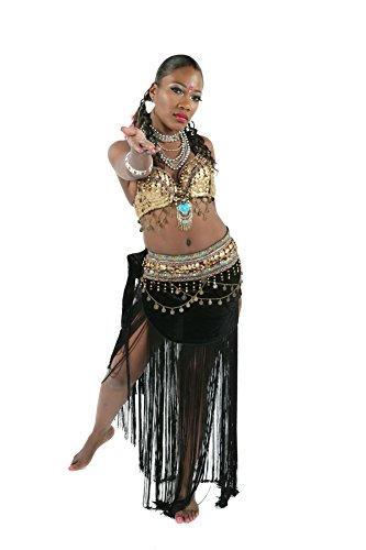 Harems Jewel Belly Dancer Costumes (Miss Belly Dance Tribal Velvet Skirt & Bra Bellydancing Costume Set Tripli Risehl - XLARGE)