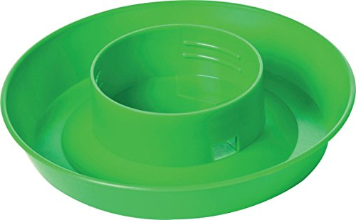 Screw On Poultry Water Base - 1 Quart Color: Green - Poultry Base