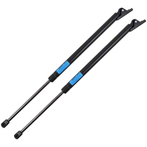 StrongArm 4291PR Jeep Cherokee Liftgate Lift Support 1997-01, Pair Pack of 2