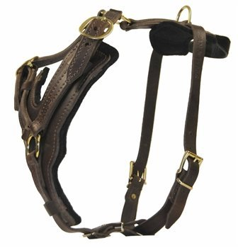 Dean and Tyler The Victory Solid Brass Hardware Dog Harness with Handle, Brown, Medium - Fits Girth Size: 23-Inch to 34-Inch by Dean & Tyler (Image #1)
