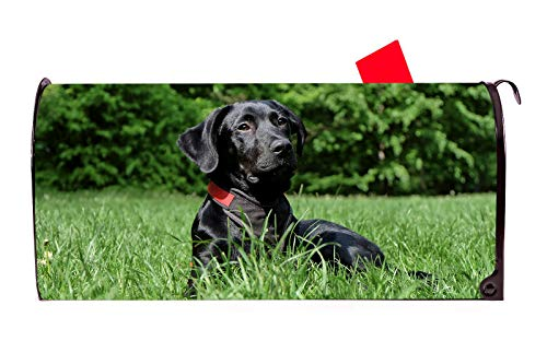 PFM Black Lab Labrador Magnetic Mailbox Cover