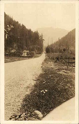 (View of Mt. Rainier Mount Rainier, Washington Original Vintage Postcard)