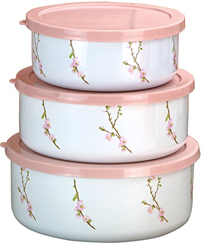 (Corelle Coordinates by Reston Lloyd 6-Piece Enamel on Steel Bowl/Storage Set, Cherry Blossom)
