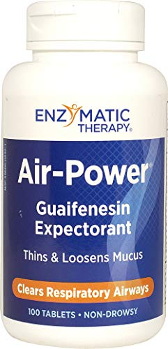 ENZYMATIC THERAPY Air Power, 100 CT