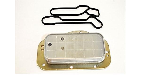 55355603: original 1,6/1,8 aceite refrigerador y sellos – nuevo de LSC: Amazon.es: Coche y moto
