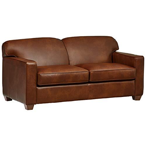 (Stone & Beam Fischer Full-Sized Sleeper Sofa, 72