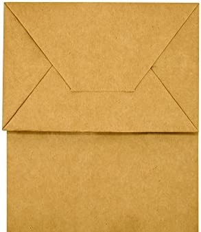 100pack 5.25x3.25x8 inch Brown Small Paper Bags with Handles Bulk, bagmad Gift Paper Bags, Kraft Birthday Party Favors Grocery Retail Shopping Bags, Craft Bags Takeouts Business (Plain Natural 100pcs)