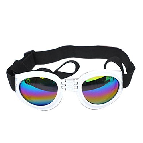 Datework Water-Proof Multi-Color Pet Dog Sunglasses Eye Protection (White) - Glass Canopy Bed