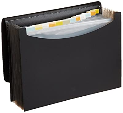Expanding File Folder by AmazonBasics