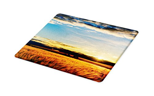 Lunarable Rustic Cutting Board, Gold Barley in Sunset Sun Rays on Flora Shadows of Clouds Rural Field Print, Decorative Tempered Glass Cutting and Serving Board, Small Size, Yellow White - Set Plate Small Flora