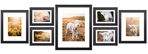 Frametory, Gallery Wall Frame Collection,Set of