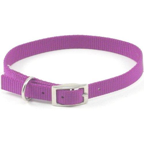 Coastal ST Nylon Dog Collar, 18