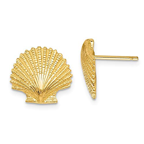 14k Yellow Gold Scallop Sea Shell Mermaid Nautical Jewelry Post Stud Earrings Outdoor Nature Animal Life Fine Jewelry Gifts For Women For Her