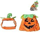 Cat Pumpkin Hat Dress Novelty Halloween Costume Cosplay Pet Supplies (Orange)