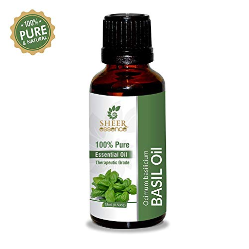Basil Oil (Ocimum basilicium) -Steam Distillation 100% Pure Natural Unrefined Uncut Undiluted Oil for Skin Care and Body Care 33.81 Fl.Oz.