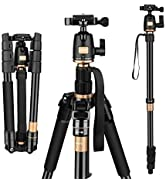 AFAITH Tripod for DSLR Camera, Ultra Compact and Lightweight Aluminum Travel Tripod with 360 Pano...