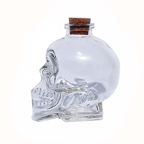 East Majik DIY Crystal Wishing Bottles Lucky Bottle Skull Shape Set of 2 ()