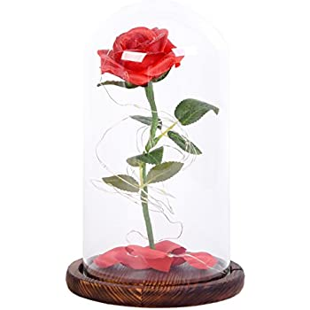 Amazon Snowkingdom Beauty The Beast Inspired Red Rose Flower