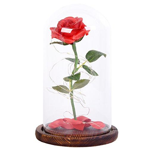 Snowkingdom Beauty Inspired Flower Fallen product image