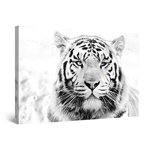 STARTONIGHT Canvas Wall Art - Daydream Tiger, Animals Framed 32 x 48 Inches