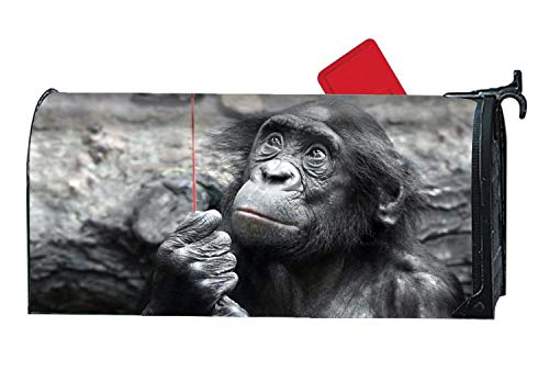 Verna Christopher Animal Bonobo Monkeys Customized Magnetic Mailbox Cover Home Garden Cute Mailbox Wraps with Full-Surface Magnet On Back
