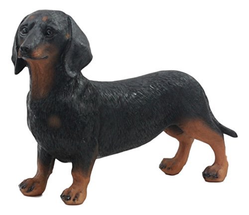 Ebros Adorable Black and Tan Dachshund Dog Statue 8