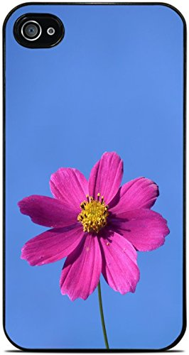 Pink Flower Blue Summer Spring Sky Black Hardshell Case for iPhone 4 / 4S by Moonlight Printing