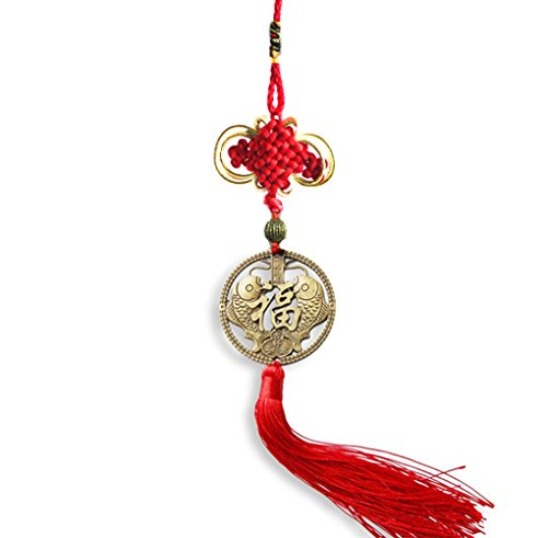 Shui Feng Charm (Chinese Feng Shui Product Hanging Ornaments Handmade Money Coins with Red Enless Chinese Knot for Wealth Protection and Success 2 Set of 6 Coins by Novelty House (Koi fish))