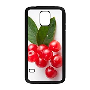 ALICASE Hard Shell Diy Case Cherry Cover For Samsung Galaxy S5 i9600 [Pattern-1]