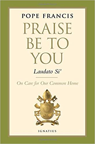 praise be to you laudato si encyclical letter pope francis 9781621640813 amazoncom books
