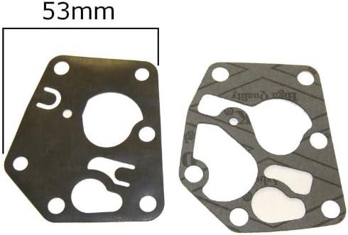 Genuine Briggs /& Stratton Diaphragm /& Gasket Set Part Number 795083 /& 495770