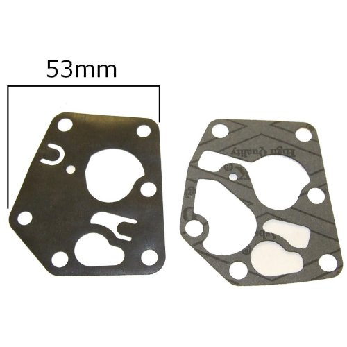 Briggs & Stratton Diaphragm & Gasket 281028 & 495770 RocwooD