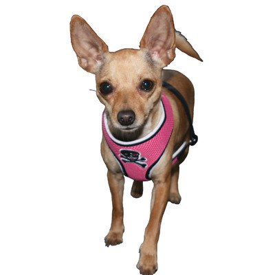 Hip Doggie Pink Skull Mesh Harness Vest, Medium, My Pet Supplies