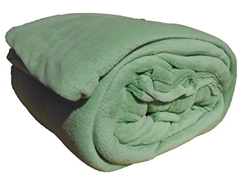 Cozy Fleece Comfort Collection Velvet Plush Sheet Set, King, Sage, 1 Sheet Set ()