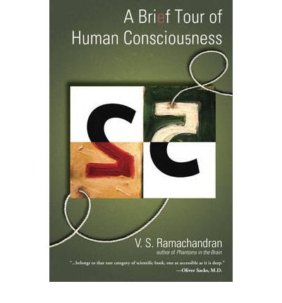 A Brief Tour of Human Consciousness: From Impostor Poodles to Purple Numbers pdf epub