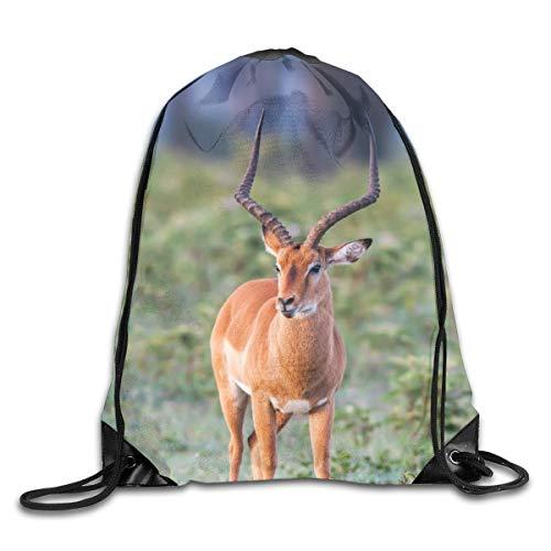 - Fashion Space Impala Unisex Women Men Bundle Casual Beam Backpack