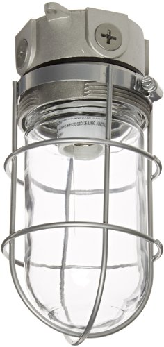 "RAB Lighting VLX100G Vaporproof VLX 3"" Ceiling Box Mount with Glass Globe and Wire Guard, A19 Type, Aluminum, 150W Power, 1/2"" Hub, Natural"