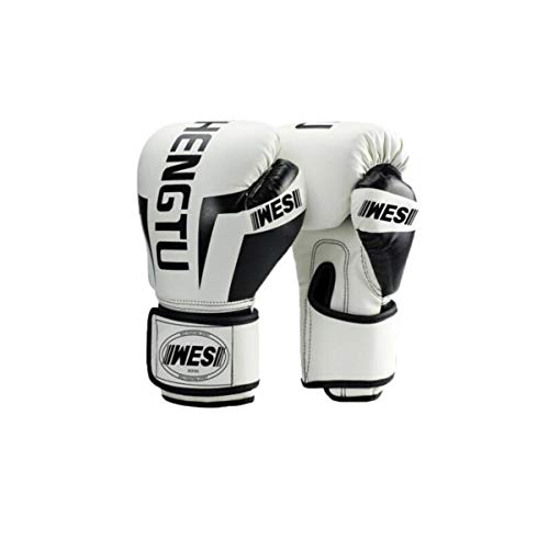 Best Martial Arts Training Gloves