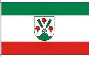 Bandera de auto Bandera Wahl doméstica–30x 45cm