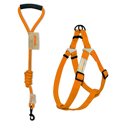 Voyager No-Pull Adjustable Step-in Harness with 3 ft. Mountain Climbing Rope Dog Leash by Best Pet Supplies - Orange, Medium
